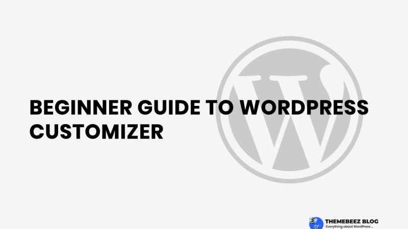 [ 2019 ] Beginner Guide To WordPress Customizer