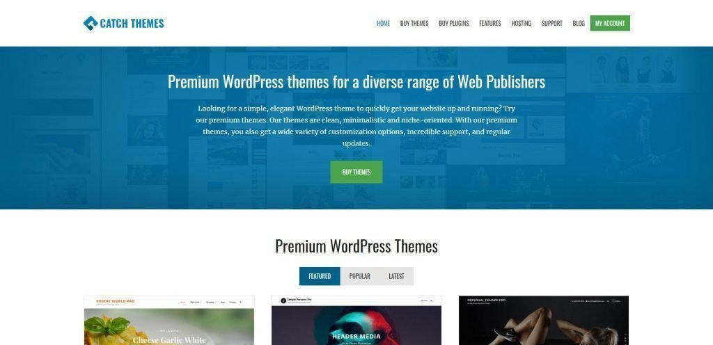 Catch themes christmas & new year WordPress deals