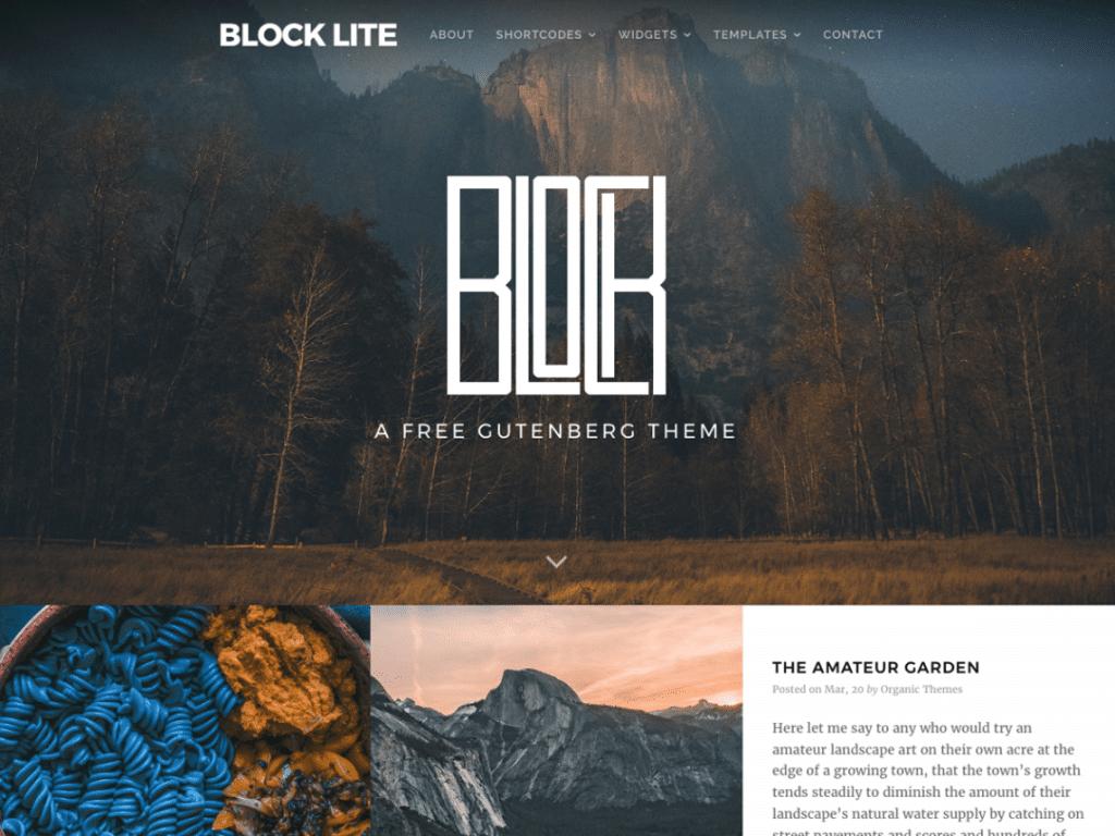 Block Lite Screen_Shot.Png
